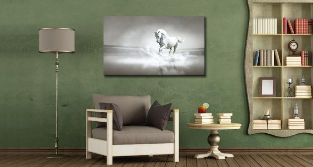 Καμβάς White Horse