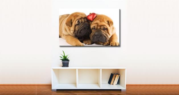 Καμβάς Puppies Love