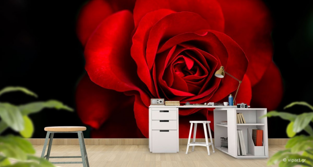 Ταπετσαρία Τοίχου Rose Red&Black