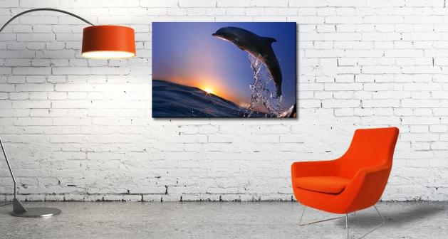 Καμβάς Δελφίνι Ηλιοβασίλεμα