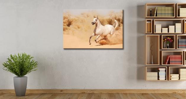 Καμβάς Άσπρο Άλογο
