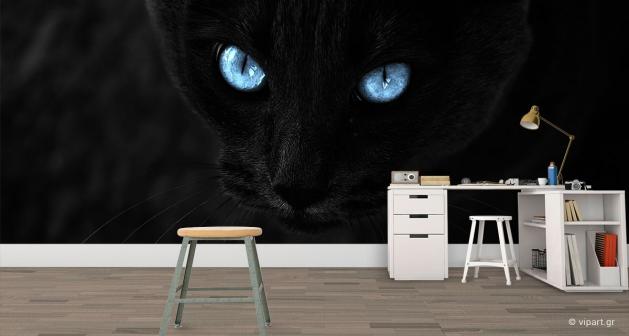 Ταπετσαρία Τοίχου Μαύρη Γάτα Μπλέ Μάτια