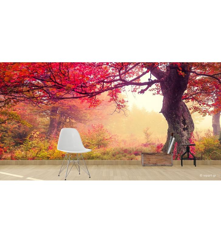 Ταπετσαρία Τοίχου Autumn Big Tree