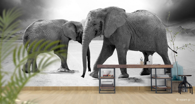 Ταπετσαρία Τοίχου Ελέφαντες