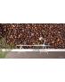 Ταπετσαρία Τοίχου Coffee Beans