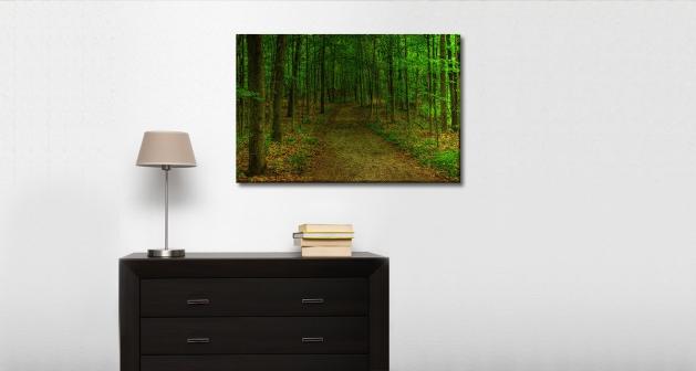 Καμβάς Δρόμος Δάσος