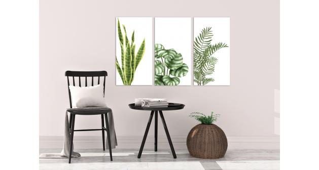 Σύνθεση Με Πίνακες Καμβάδες 110x60- 3 Τεμάχια - πράσινα φυτά - Plants