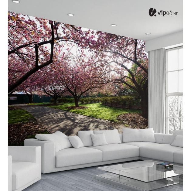 Ταπετσαρία Τοίχου  Δέντρα άνοιξη - Spring Trees