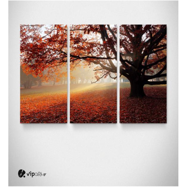 Καμβάς Τρίπτυχος Πίνακας Δάσος Το Φθινόπωρο