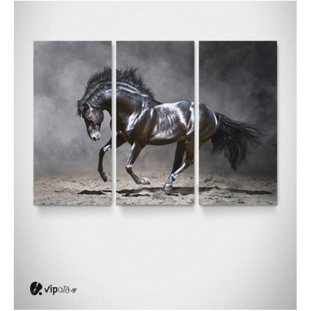 Καμβάς Τρίπτυχος Πίνακας Μαύρο Άλογο