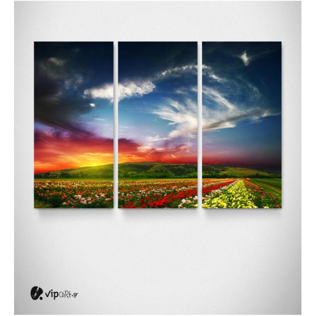 Καμβάς Τρίπτυχος Πίνακας Ηλιοβασίλεμα Πεδιάδα Λουλούδια Σύννεφα