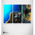 Καμβάς Τρίπτυχος Πίνακας Βυθός περίεργο Ψάρι