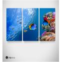 Καμβάς Τρίπτυχος Πίνακας Βυθός κίτρινα Ψάρια