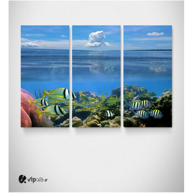 Καμβάς Τρίπτυχος Πίνακας Βυθός Ψάρια Σύννεφα Ουρανός
