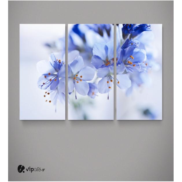Καμβάς Τρίπτυχος Πίνακας με Μπλε - Λευκά Όμορφα Λουλούδια
