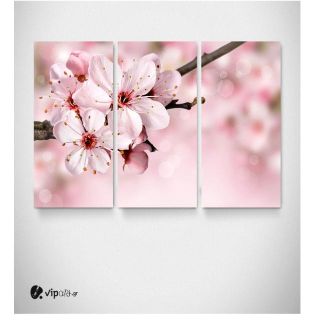 Καμβάς Τρίπτυχος Πίνακας Αμυγδαλιά με Ροζ αποχρώσεις