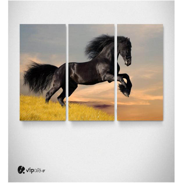 Καμβάς Τρίπτυχος Πίνακας Άγριο Άλογο