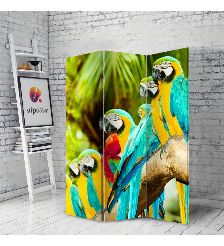 Διακοσμητικό Παραβάν παπαγάλος Beautiful Macaw