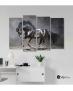 Πίνακας Καμβάς Τετράπτυχος Μαύρο Άλογο