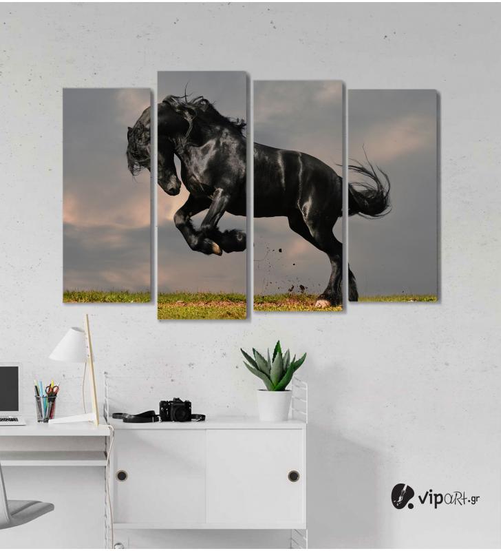 Πίνακας Καμβάς Τετράπτυχος  Wild Horse
