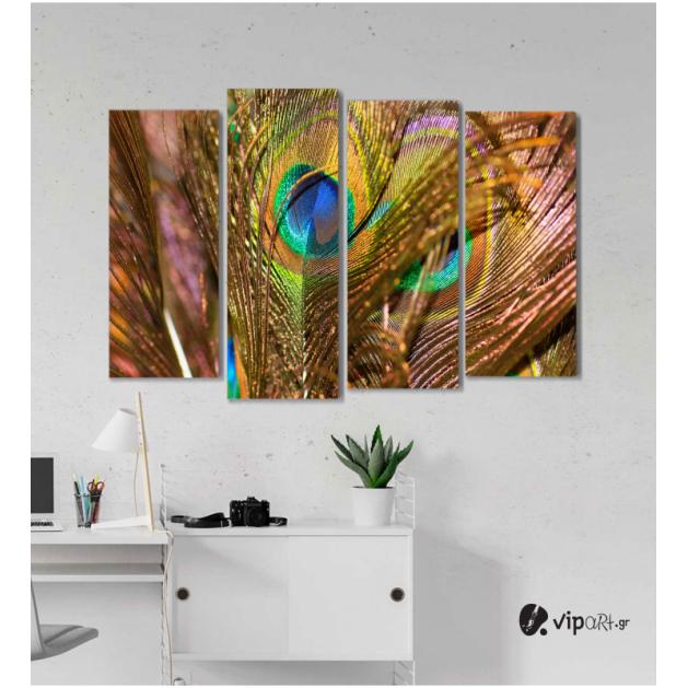 Πίνακας Καμβάς Τετράπτυχος Peacock Feather