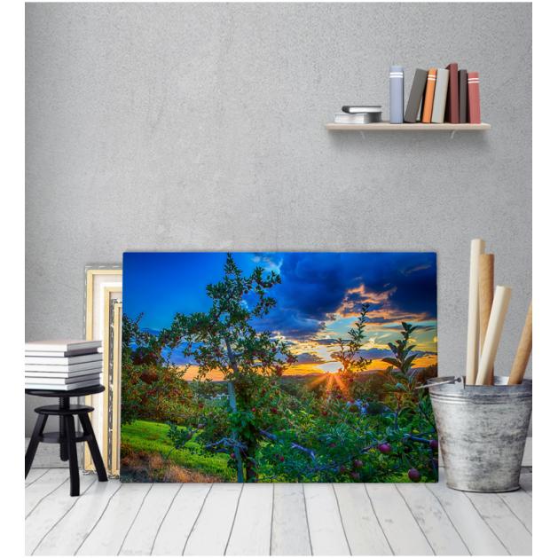 Πίνακας Καμβάς Ηλιοβασίλεμα Σύννεφα Καρποί