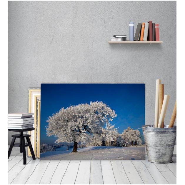 Πίνακας Καμβάς Δέντρο Χιονισμένο Τοπίο