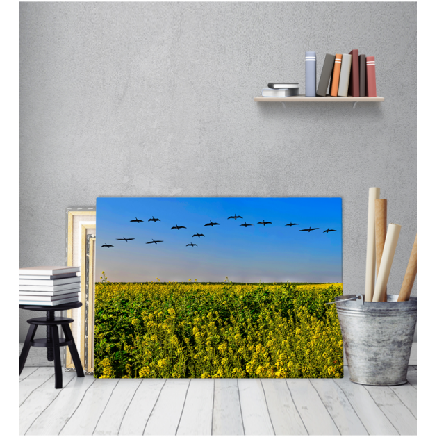 Πίνακας Καμβάς Πουλιά σε Σχηματισμό