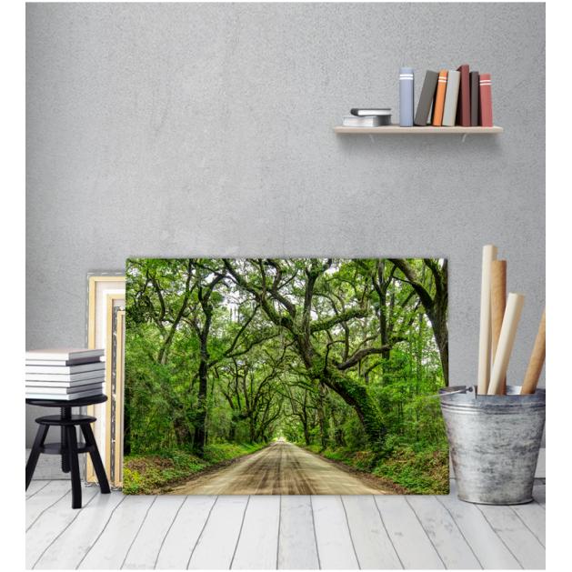 Πίνακας Καμβάς Δέντρα Δρόμος