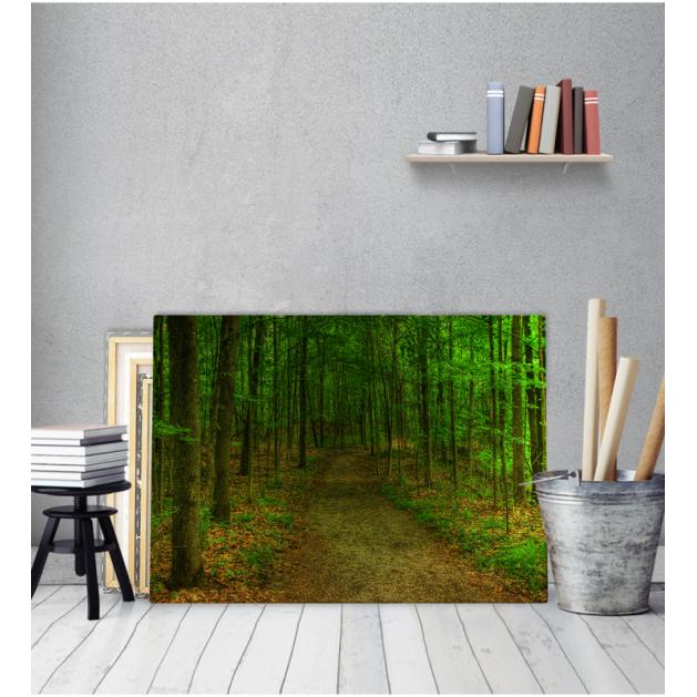 Πίνακας Καμβάς Δρόμος Δάσος