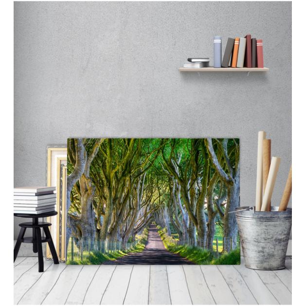 Πίνακας Καμβάς Δρόμος Ανάμεσα Σε Δέντρα