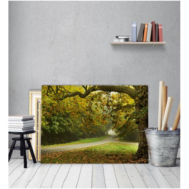 Πίνακας Καμβάς Δρόμος Σε Δάσος