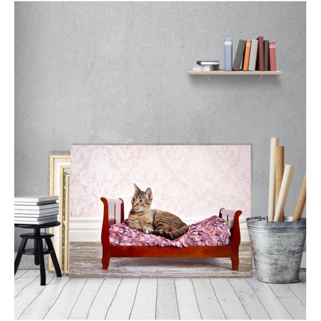 Πίνακας Καμβάς Γάτα Σε Κρεβάτι