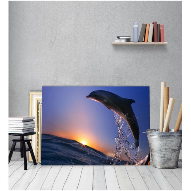 Πίνακας Καμβάς Δελφίνι Ηλιοβασίλεμα