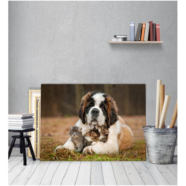 Πίνακας Καμβάς Σκύλος Με Γατάκια