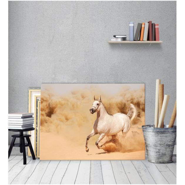 Πίνακας Καμβάς Άσπρο Άλογο
