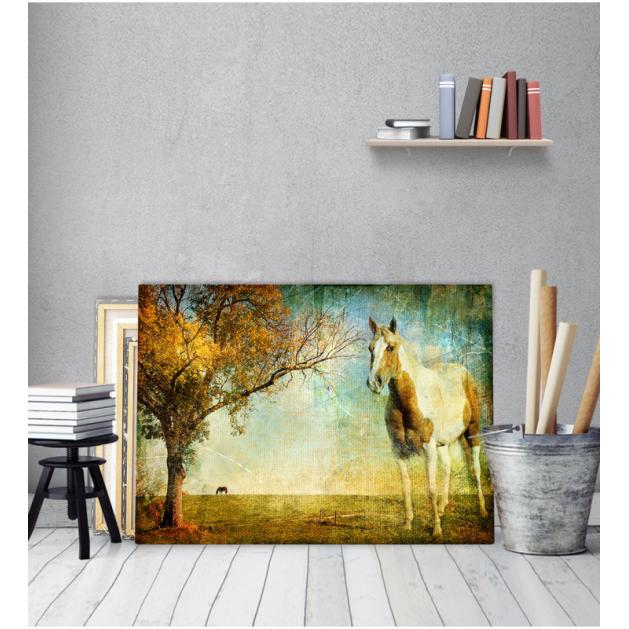 Πίνακας Καμβάς Vintage Άλογο