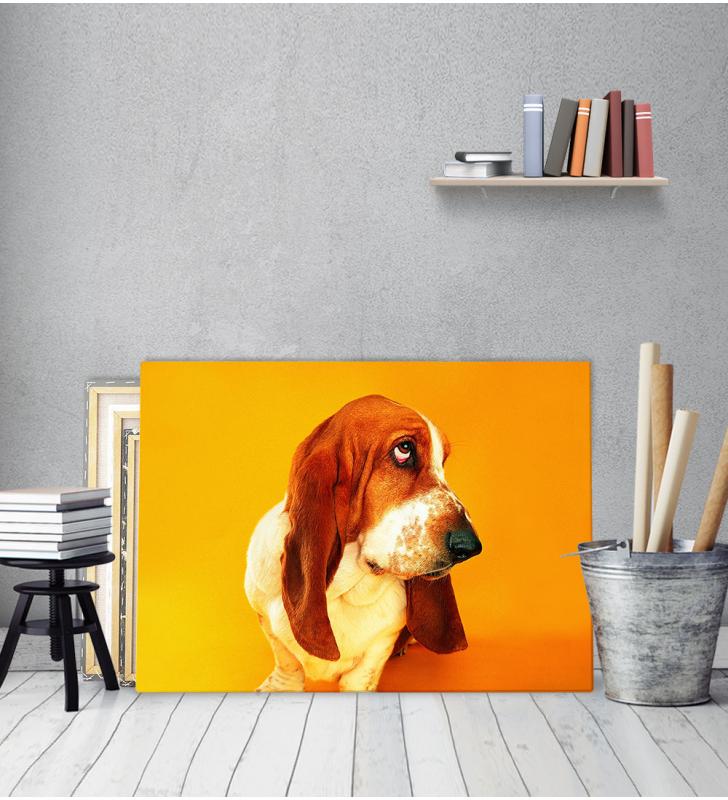 Πίνακας Καμβάς με εκτύπωση Σκύλος Λουκάνικο