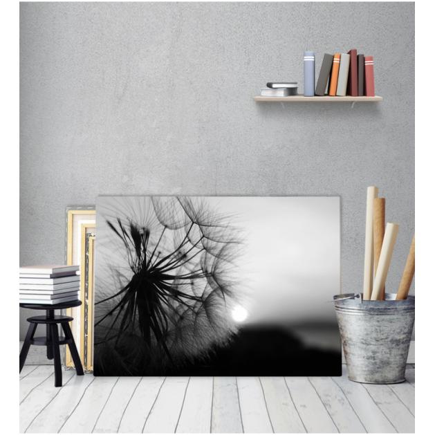 Πίνακας Καμβάς  Πικραλίδα - Dandelion