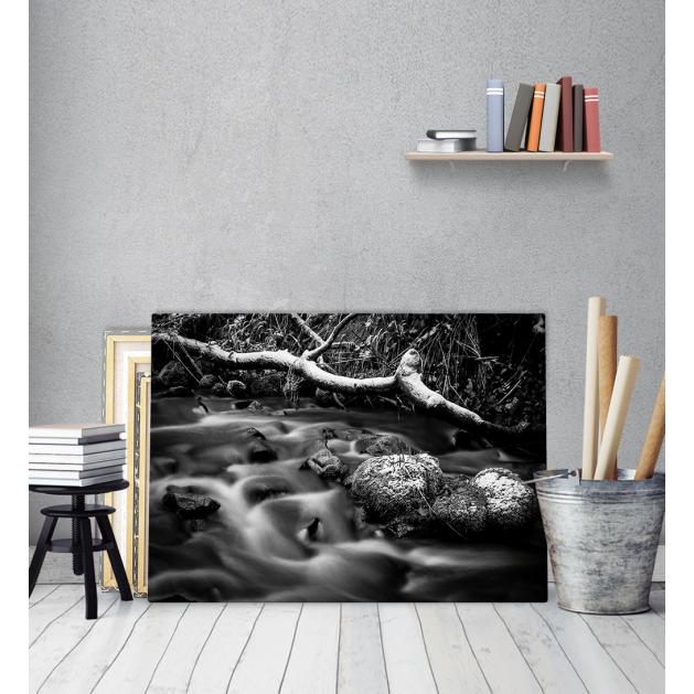 Πίνακας Καμβάς Ασπρόμαυρος Ρυάκι