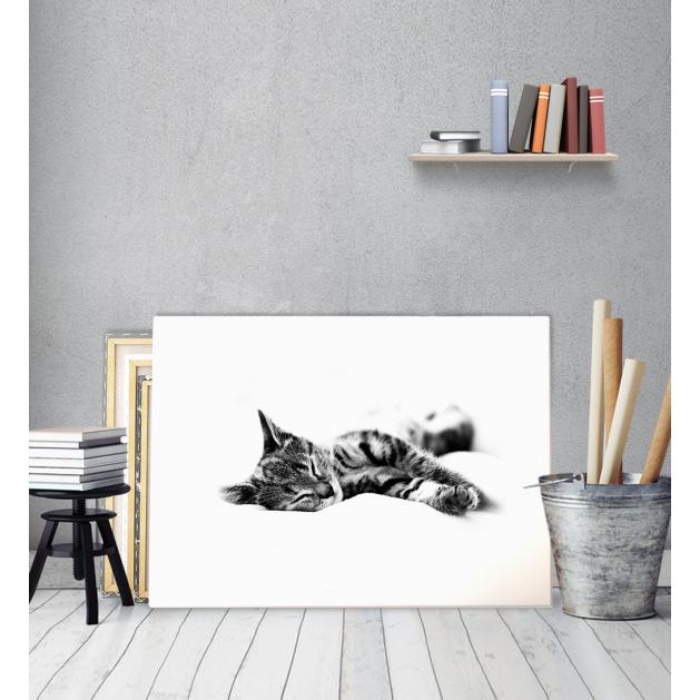 Πίνακας Καμβάς Sleepy Kitty