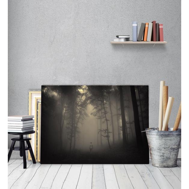 Πίνακας Καμβάς Ομίχλη Δάσος Fog Forest Man