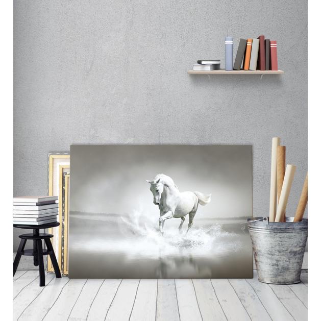 Πίνακας Καμβάς Λευκό Άλογο - White Horse