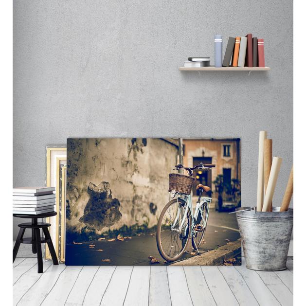 Πίνακας Καμβάς Vintage ποδήλατο - Bike