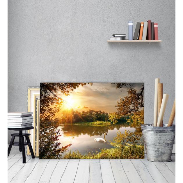 Πίνακας Καμβάς Όμορφο Τοπίο Κύκνος